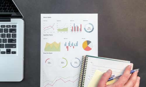 דוחות חשבונאיים וסטטיסטיקת הכנסות